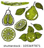 vector set with hand drawn... | Shutterstock .eps vector #1053697871