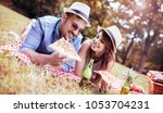 picnic. young couple eating... | Shutterstock . vector #1053704231