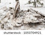 snow in the spring dirty | Shutterstock . vector #1053704921