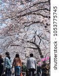 tokyo  japan   march 25th  2018 ...   Shutterstock . vector #1053775745