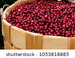 Harvest Fresh Red Cranberries...