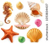 shell  snail  mollusk  starfish ... | Shutterstock .eps vector #1053834437
