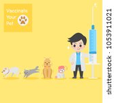Stock vector frighten cute dogs cat doctor with injection needle character for vaccinate pets on background 1053911021