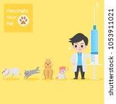 frighten cute dogs  cat  doctor ...   Shutterstock .eps vector #1053911021