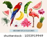 hand drawn tropical collection... | Shutterstock .eps vector #1053919949