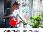 woman watering flowers at home... | Shutterstock . vector #1053980861