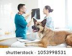 ill german shephers lying on... | Shutterstock . vector #1053998531
