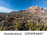 mojave desert yuccas with mt... | Shutterstock . vector #1054096847