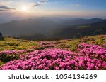 green valley high on the...   Shutterstock . vector #1054134269