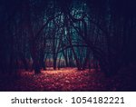 Mysterious Fairy Forest In A...