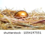 golden egg on a bed of straw. | Shutterstock . vector #1054197551