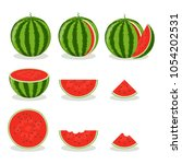 set of colorful watermelon... | Shutterstock .eps vector #1054202531