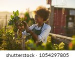 young african american woman... | Shutterstock . vector #1054297805