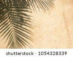 silhouette black of tree...   Shutterstock . vector #1054328339