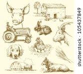 farm animals   hand drawn...   Shutterstock .eps vector #105437849