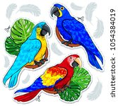 stiker bright colored parrots ... | Shutterstock .eps vector #1054384019