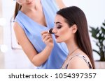 professional visage artist... | Shutterstock . vector #1054397357