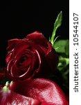 still life shoot of red wet... | Shutterstock . vector #10544107