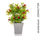 small decorative chilli pepper... | Shutterstock . vector #1054417769