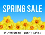 spring sale banner with... | Shutterstock .eps vector #1054443467