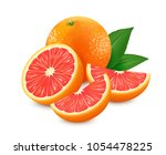 fresh grapefruits with leaf... | Shutterstock .eps vector #1054478225