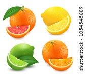 fresh citrus fruits set. orange ... | Shutterstock .eps vector #1054545689