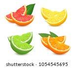 fresh citrus fruits set. orange ... | Shutterstock .eps vector #1054545695