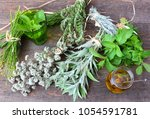 fresh herbs and spices for... | Shutterstock . vector #1054591781