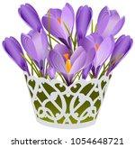 basket of lilac crocuses | Shutterstock .eps vector #1054648721