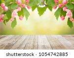 spring blossom garden... | Shutterstock . vector #1054742885