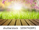 spring flowers and wooden deck... | Shutterstock . vector #1054742891