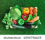 freshly harvested vegetables in ... | Shutterstock . vector #1054756625