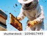 beekeeper working collect honey.... | Shutterstock . vector #1054817495