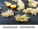 elder flower juice ingredients   Shutterstock . vector #1054822481