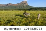 a beautiful view in south...   Shutterstock . vector #1054835735
