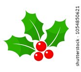 christmas holly berry flat icon ... | Shutterstock .eps vector #1054850621