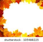 Autumn Backdrop   Frame...