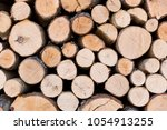 firewood for the winter  stacks ... | Shutterstock . vector #1054913255