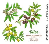 olive branches vector set | Shutterstock .eps vector #1054916627