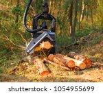 lumberjack with modern... | Shutterstock . vector #1054955699