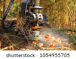 lumberjack with modern... | Shutterstock . vector #1054955705