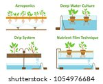 set of aeroponic and hydroponic ... | Shutterstock .eps vector #1054976684