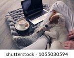 woman in cozy home wear... | Shutterstock . vector #1055030594