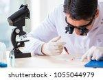 doctor chemist working on blood ... | Shutterstock . vector #1055044979