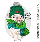 vector pig with green knitted... | Shutterstock .eps vector #1055061677