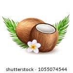 coconut exotic leaves... | Shutterstock .eps vector #1055074544