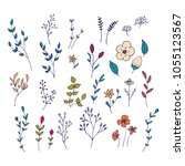 hand drawn romantic flowers.... | Shutterstock .eps vector #1055123567