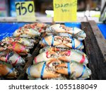 Small photo of do you want crab?