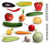 realistic vegetables  farmer... | Shutterstock .eps vector #1055373344