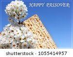 holiday of passover  branch of... | Shutterstock . vector #1055414957